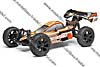 Desertwolf RTR 1/8 4WD Brushless Buggy